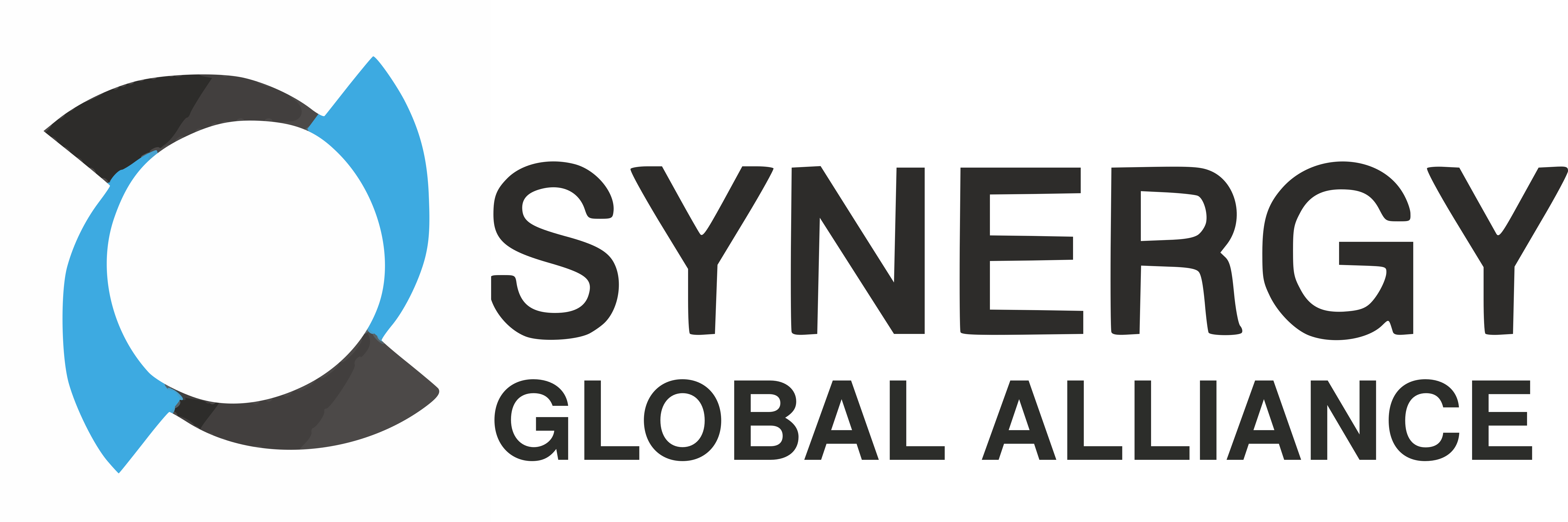 SYNERGY GLOBAL ALLIENCE